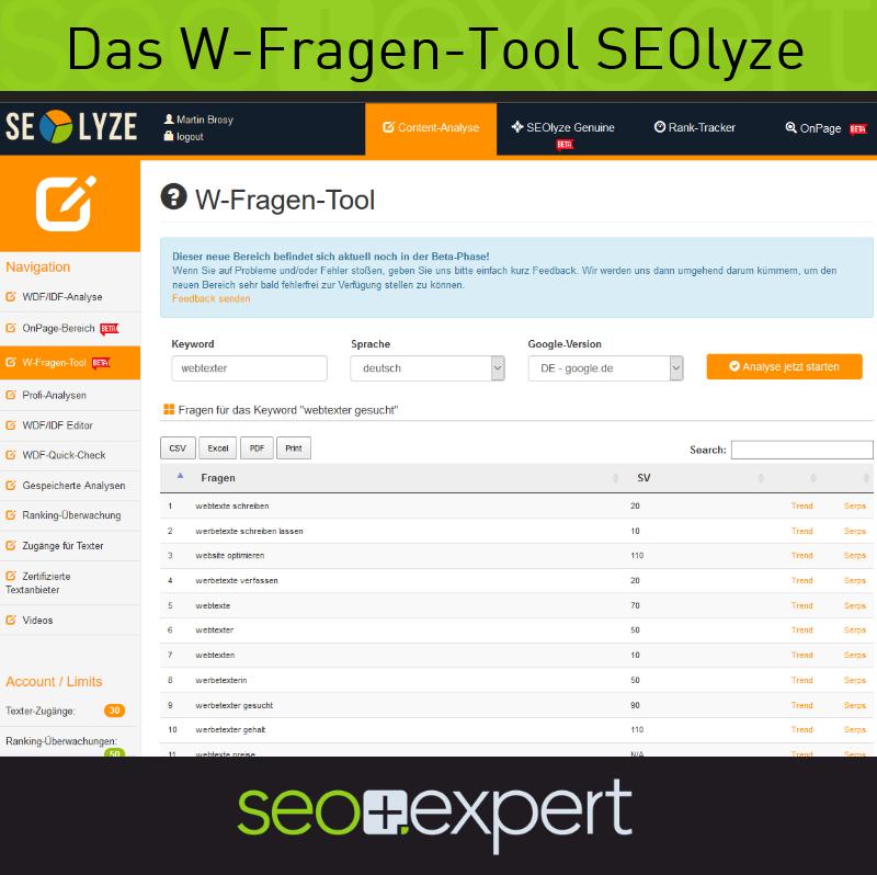 Screenshot des W-Fragen-Tools SEOlyze